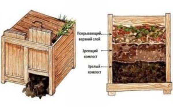 Использование компоста
