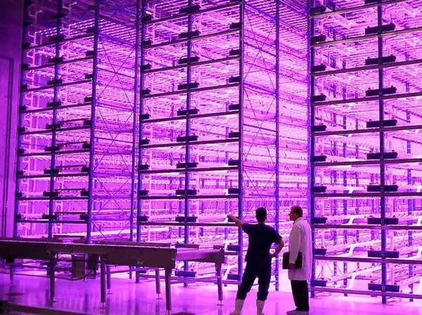 В промышленных масштабах можно получить дополнительные выгоды. Экономичность светодиодных светильников поможет улучшить результаты хозяйственной деятельности