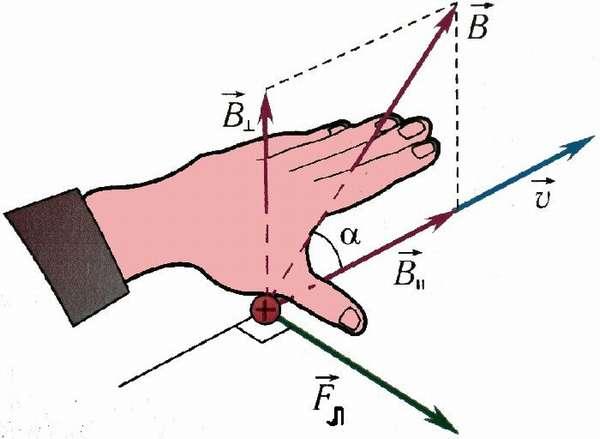 При помощи рук можно определить множество различных параметров