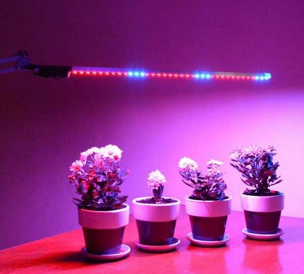 Для ухода за растениями применяют особый спектр излучения