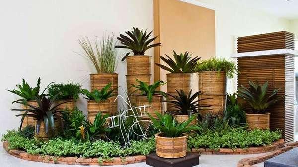 Использование декоративных растений