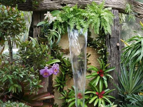 Для тропических растений уровень влажности воздуха приходится повышать